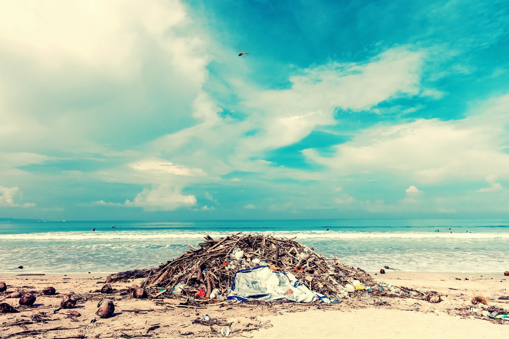 eko inicijativa