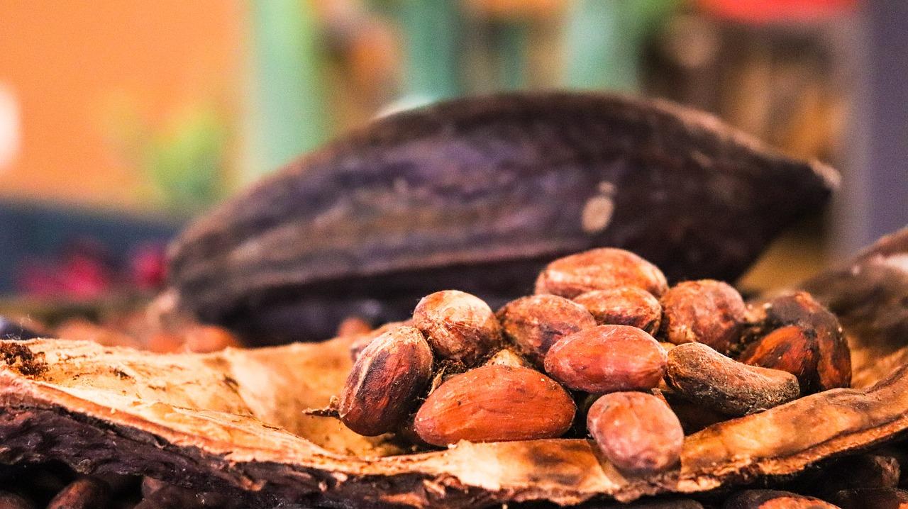sirovi kakao02-slowage365